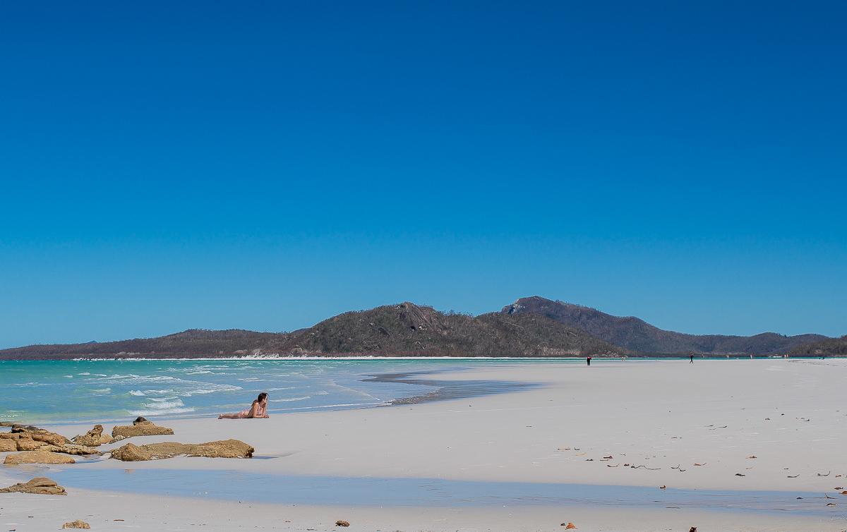 bois flotté et sable blanc sur la plage de whiteheaven