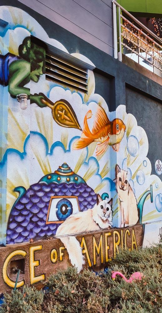 street art chat a Venice