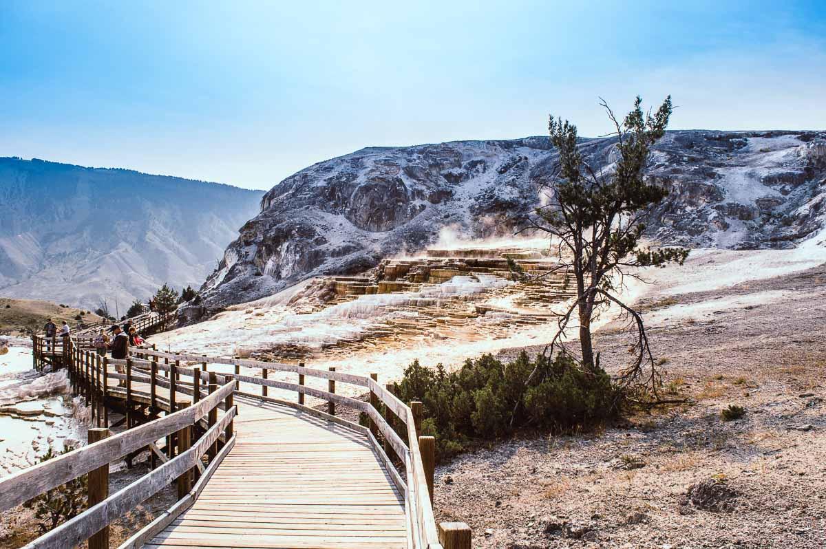 promenade sur les pontons de Mammoth hotsprings