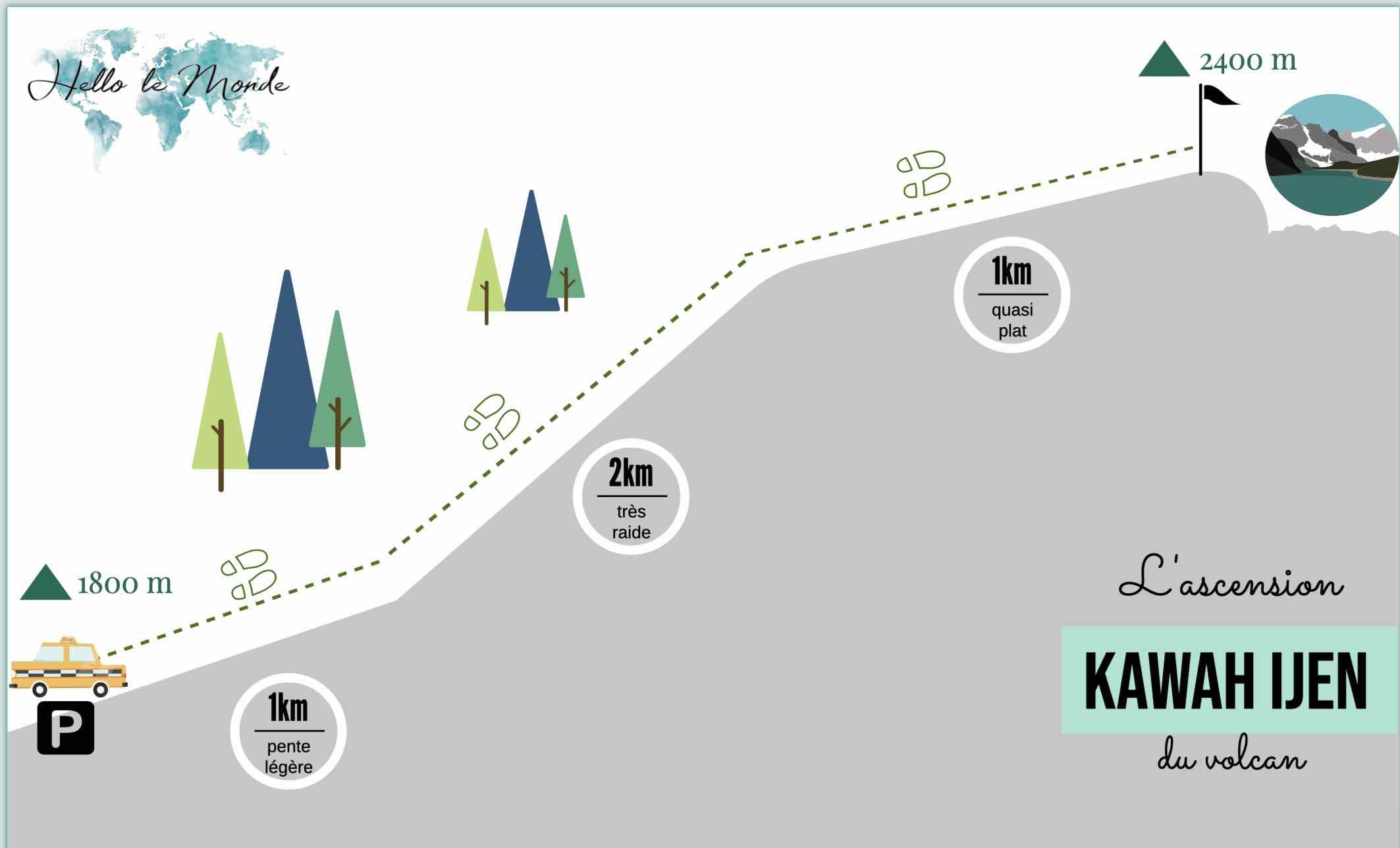 infographie créé avec piktochart