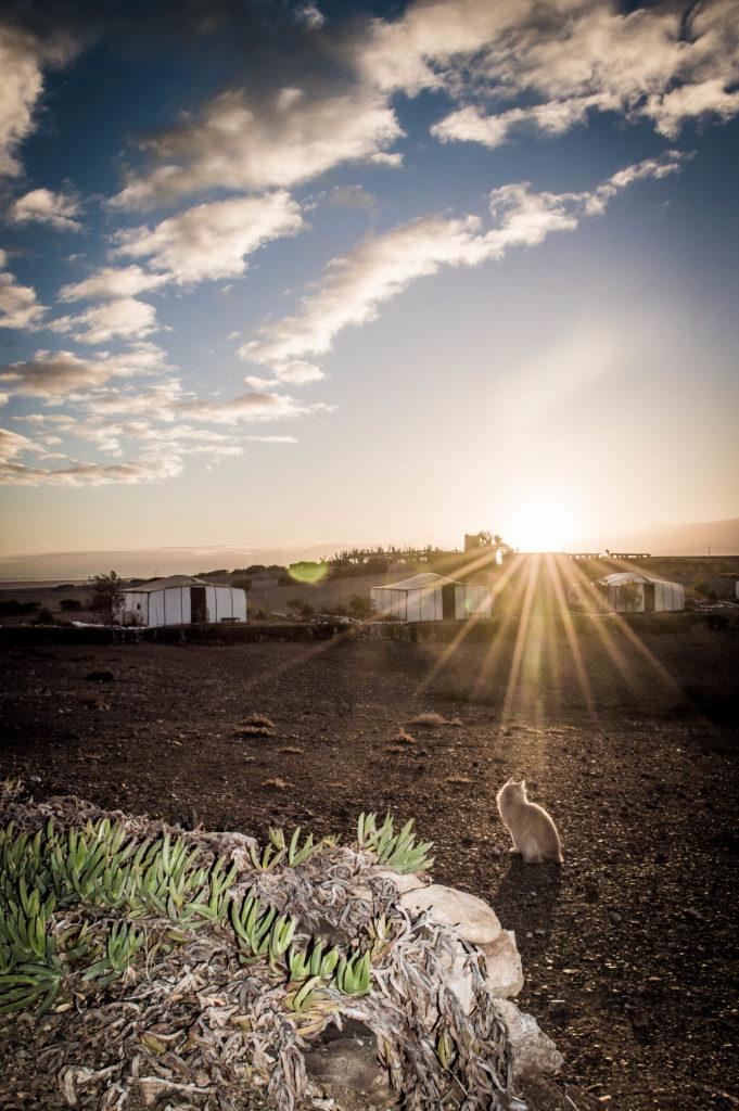 tentes berbères au coucher du soleil