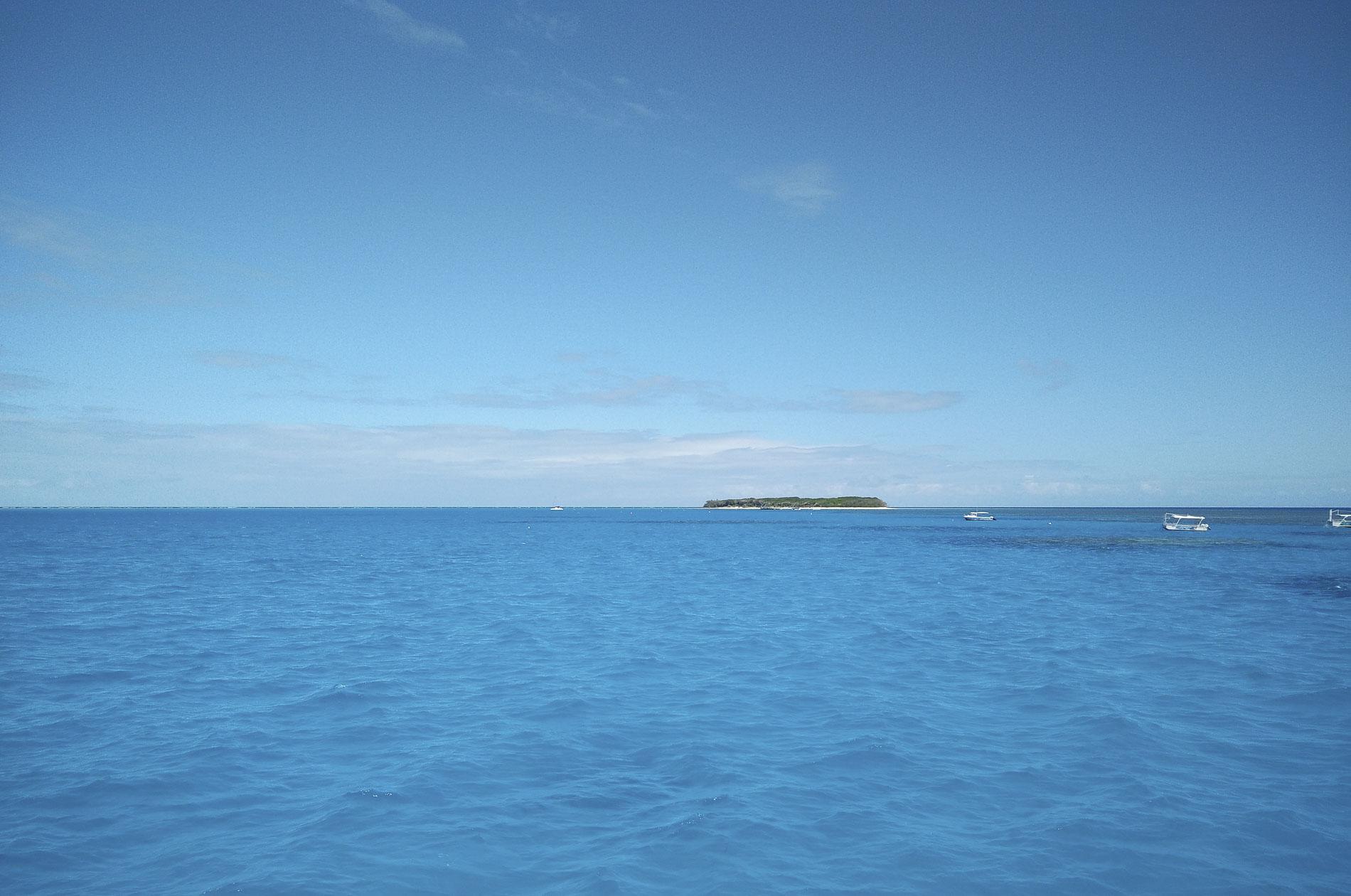 île de lady musgrave