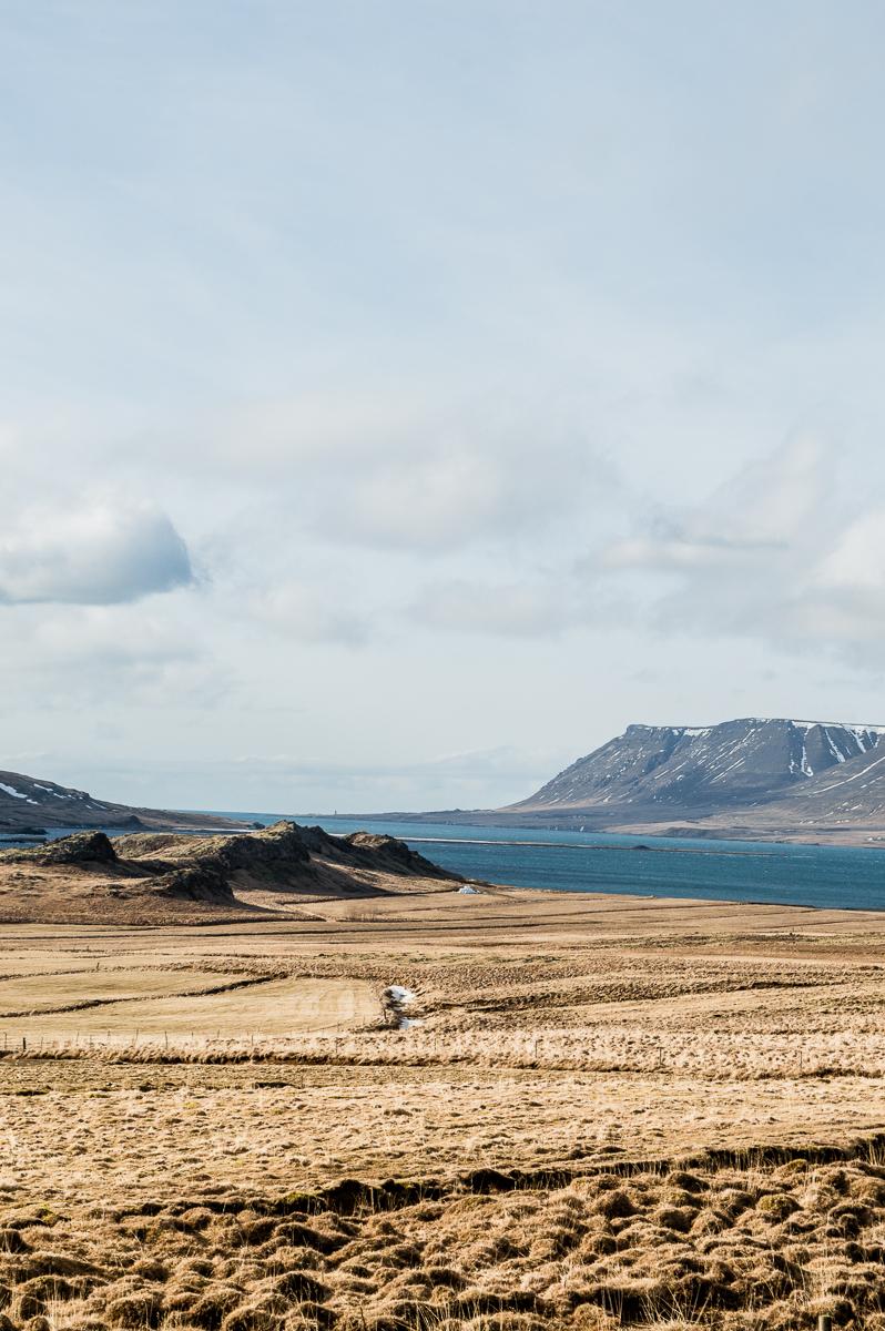 paysage de roadtrip en islande