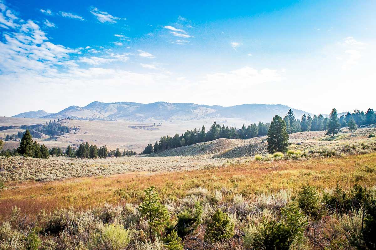 paysage de la Lamar Valley