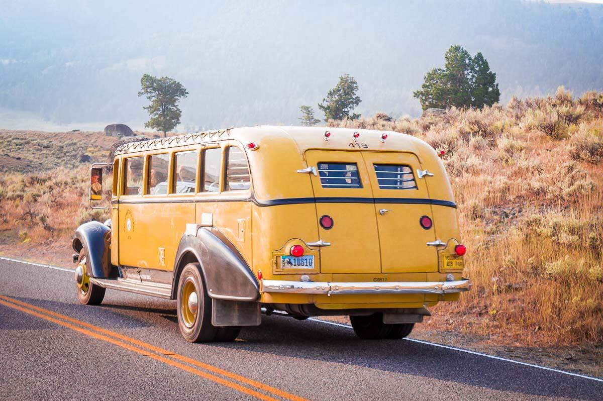 voiture jaune dans le parc de yellowstone