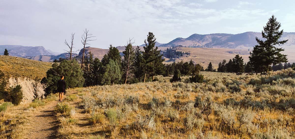 randonnée dans Lamar Valley