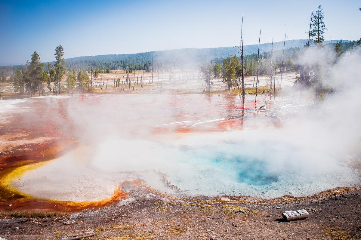 bassins géothermiques de Upper geyser basin à yellowstone