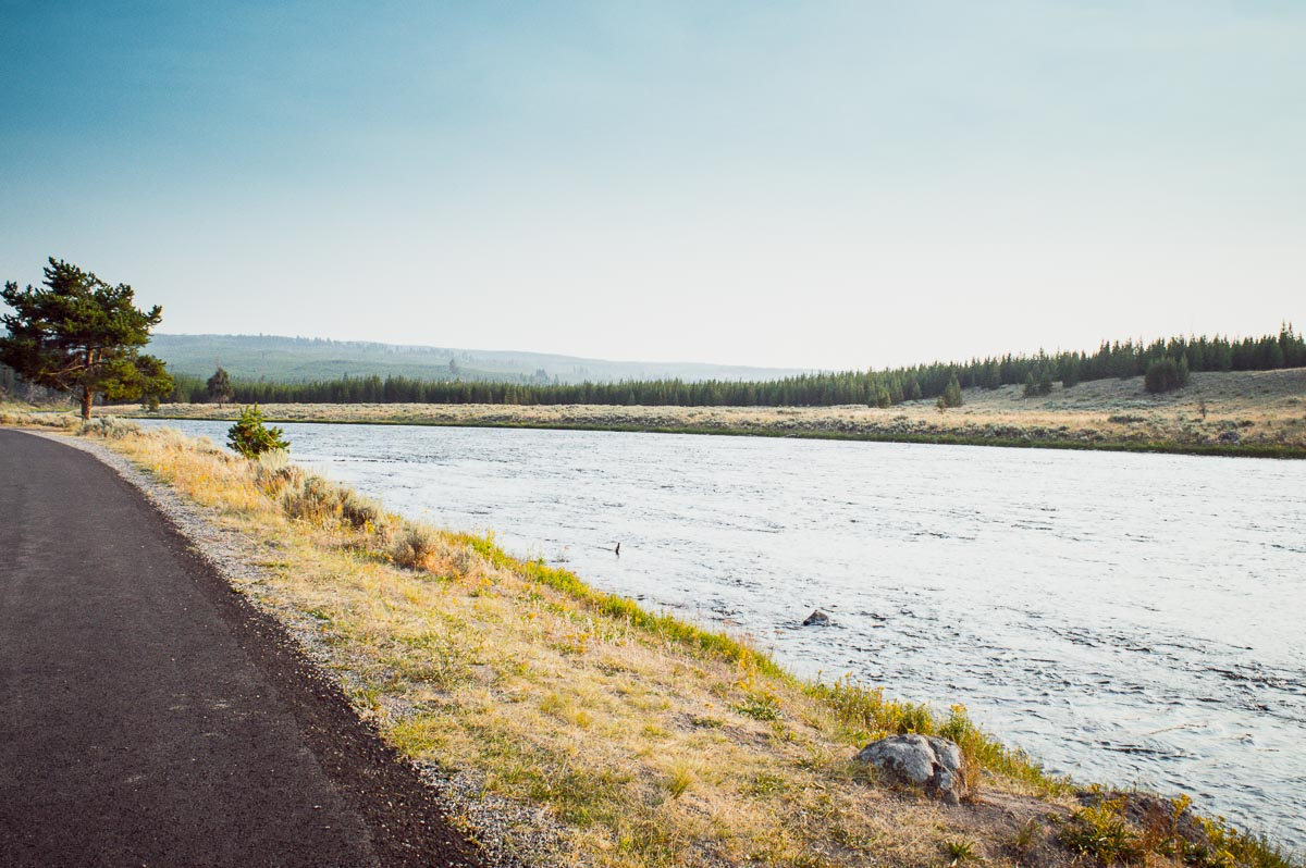 prairie de la Madison river dans le parc de yellowstone