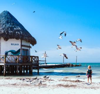 Holbox : 3 jours dans ce petit paradis mexicain