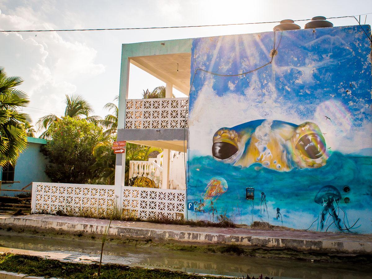 façade street art tortue à holbox