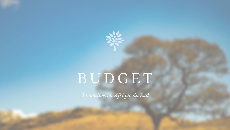 budget en Afrique du sud