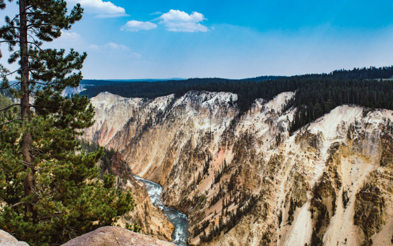 Le Grand Canyon de Yellowstone