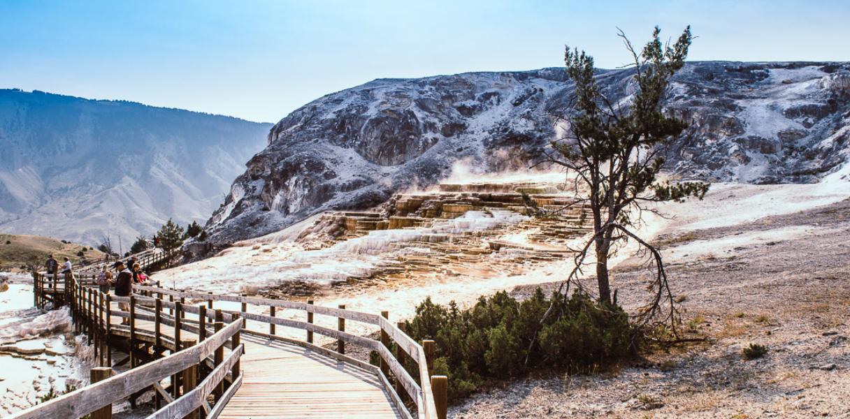 Mammoth Hot springs à Yellowstone #2