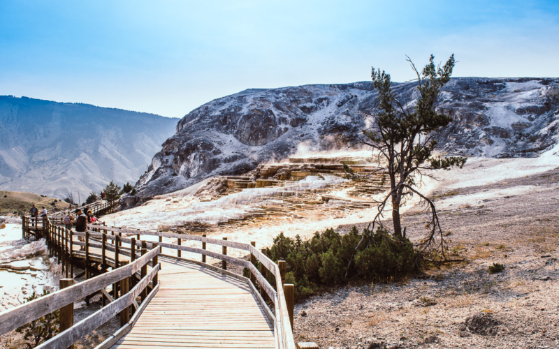 Les Mammoth Hot springs dans le parc national de Yellowstone #2