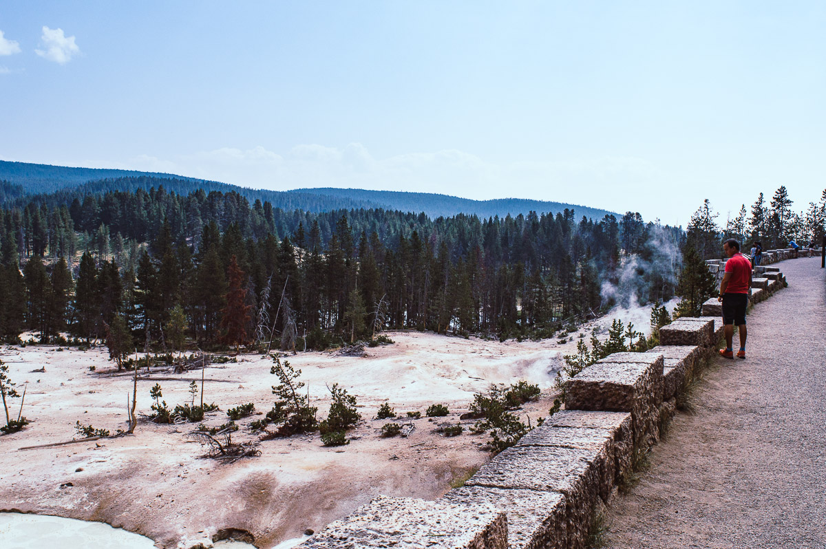 mud vulcano area dans Norris geyser basin