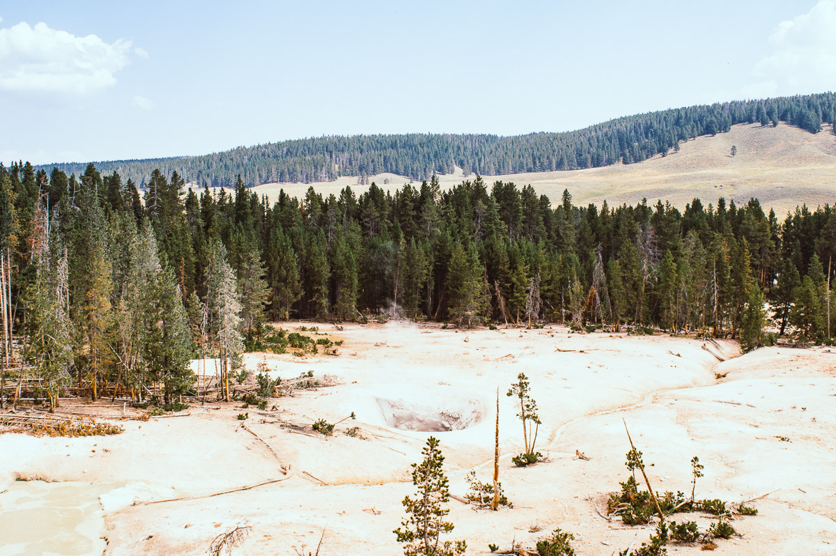 mud vulcano area dans le secteur de Norris geyser basin