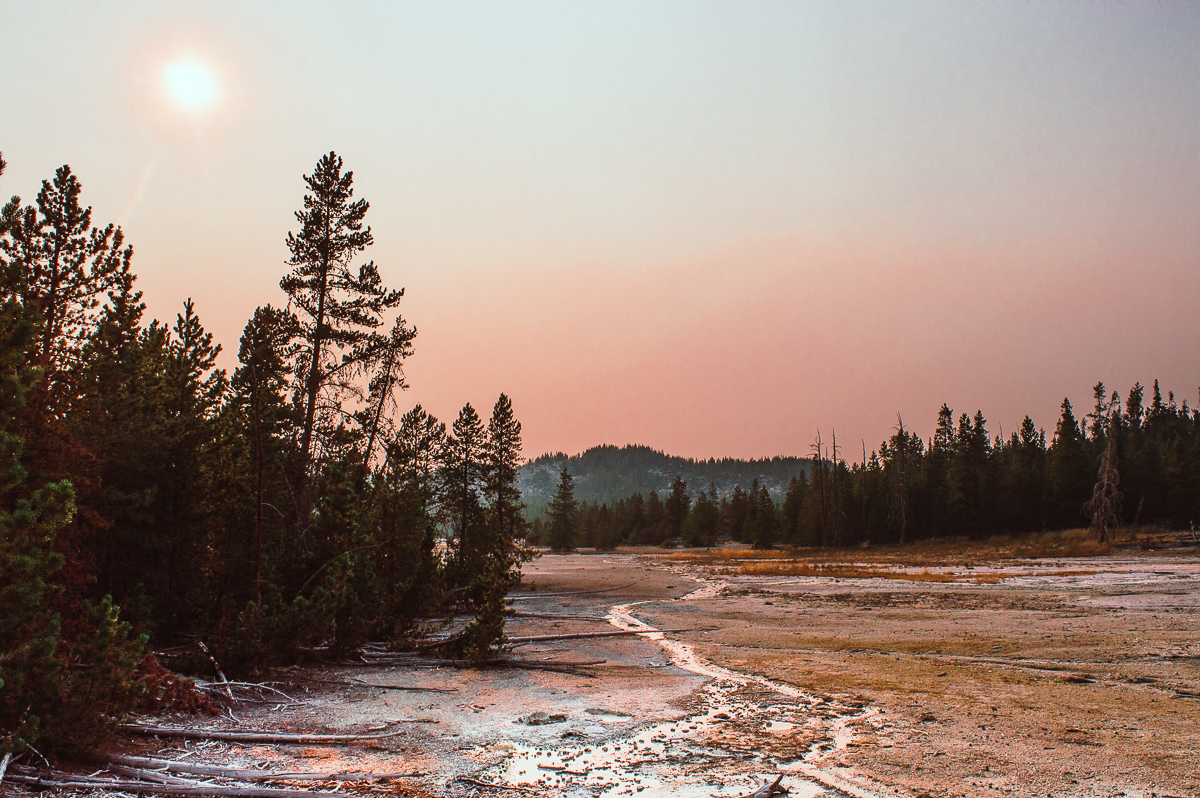 Norris geyser basin et porcelain basin au coucher du soleil