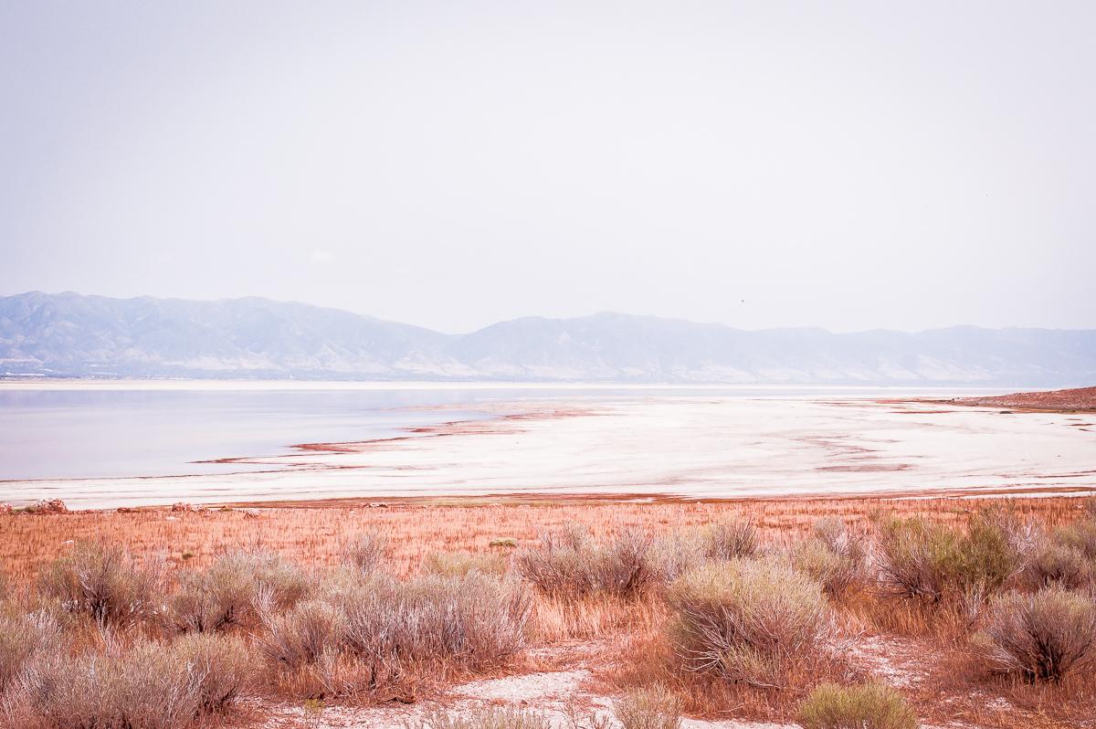 berges du grand lac salé à Antelope island