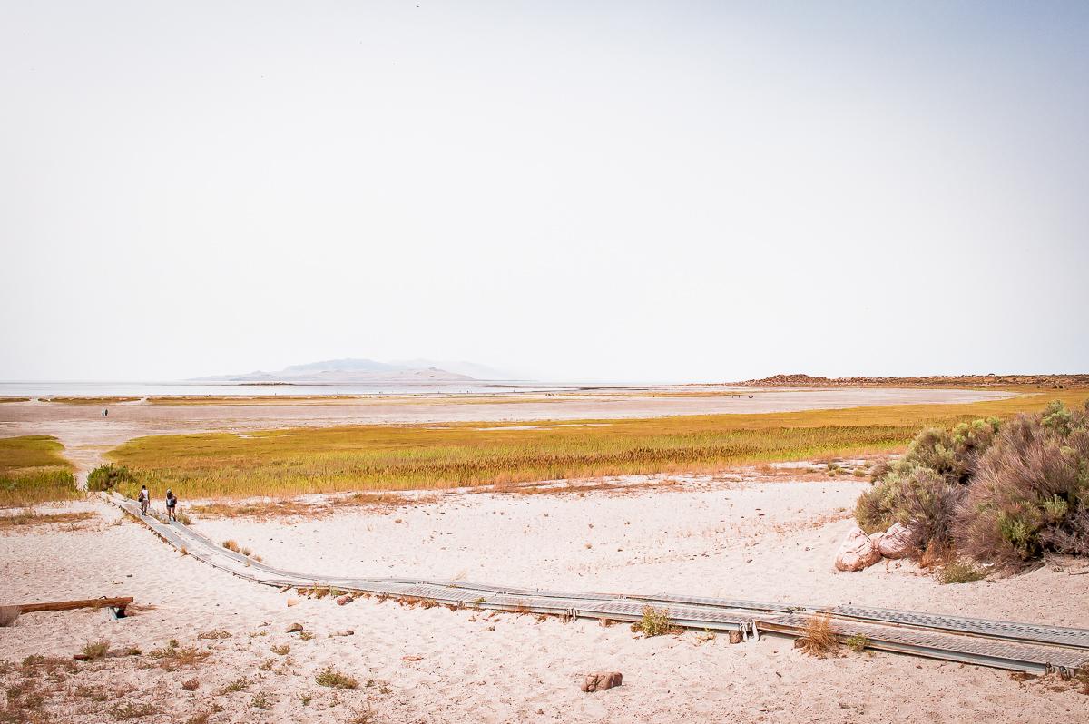 plage à antelope Island