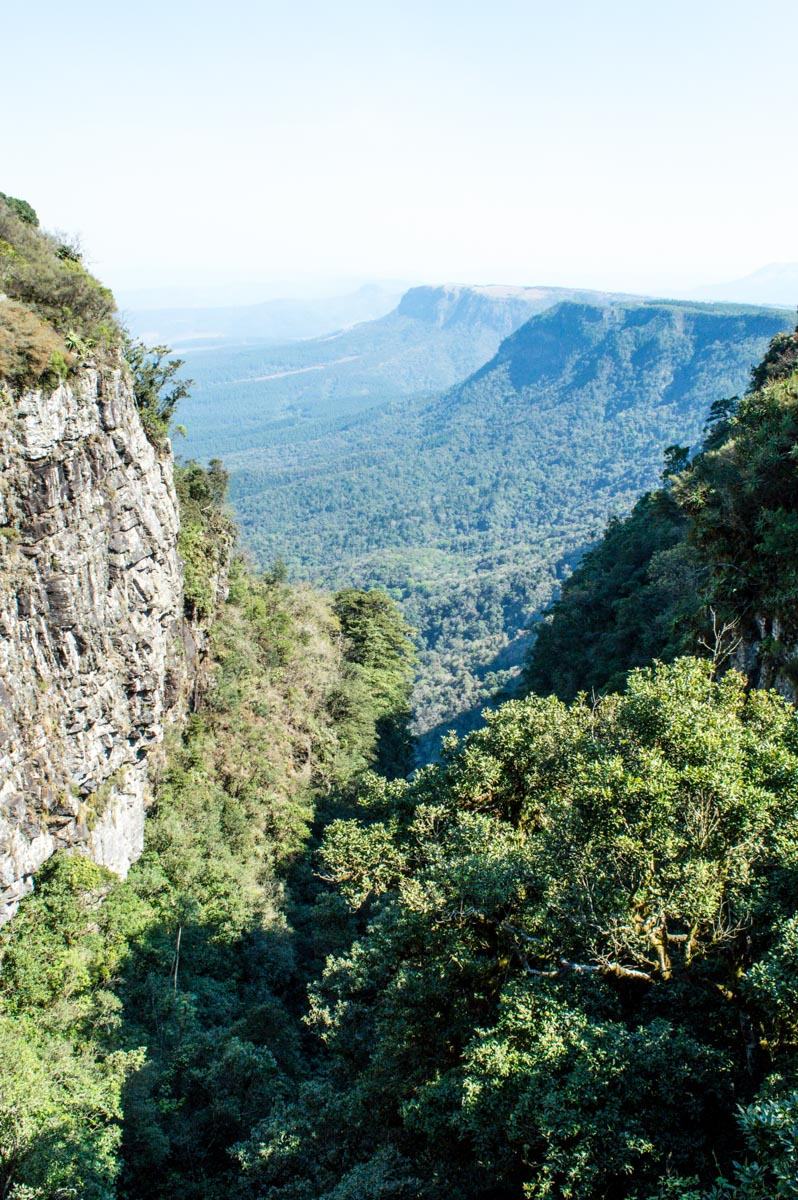 forêt blyde river canyon