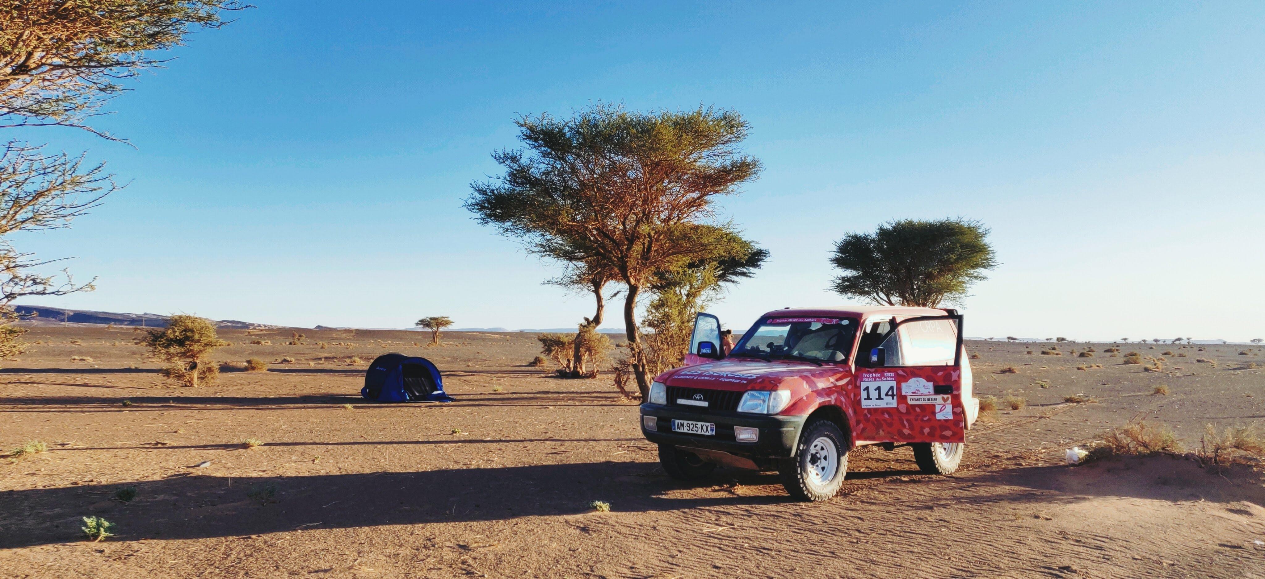 4X4 land cruiser au trophée roses des sables