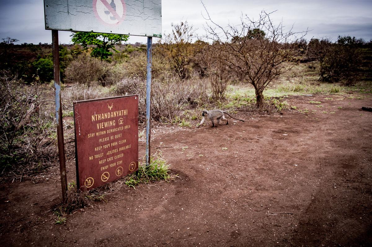aire de repos dans le Kruger