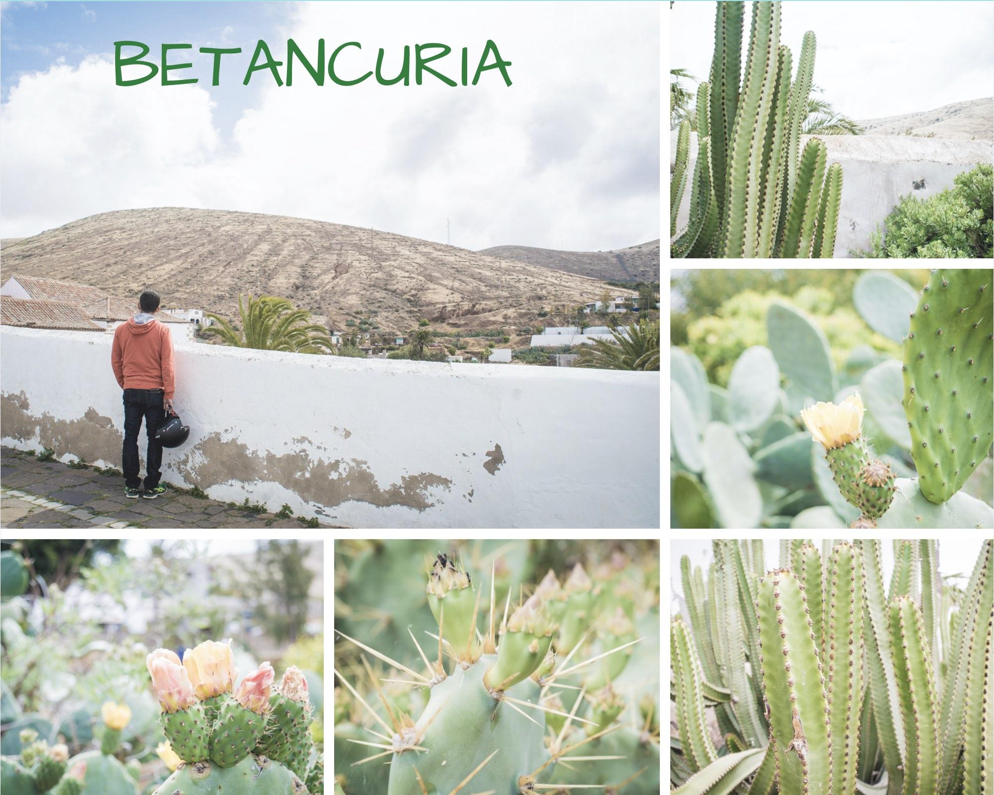 Betancuria