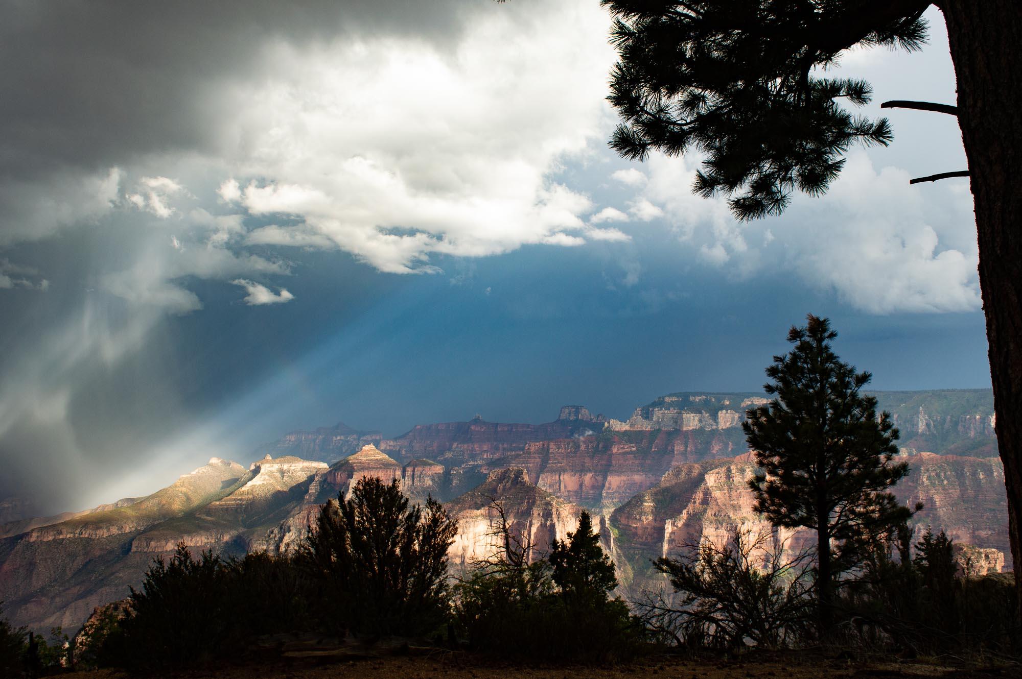 north rim au Grand Canyon