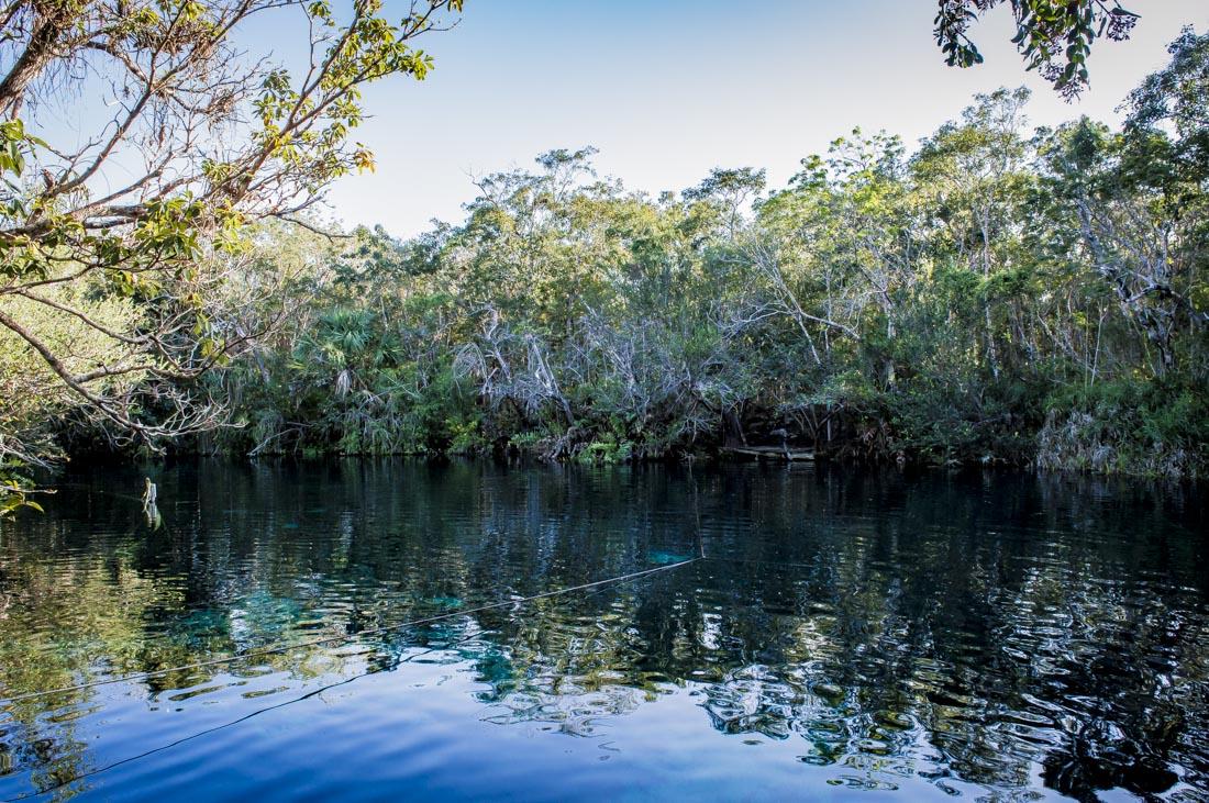 baignade au cenote carwash