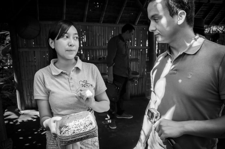 visiter une plantation de kopi luwak